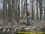 יער ההשתנות