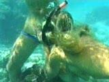 חם מתחת למים